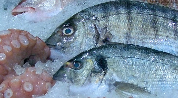 owoce morza w diecie dukana